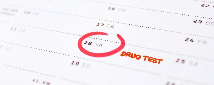 detox from THC