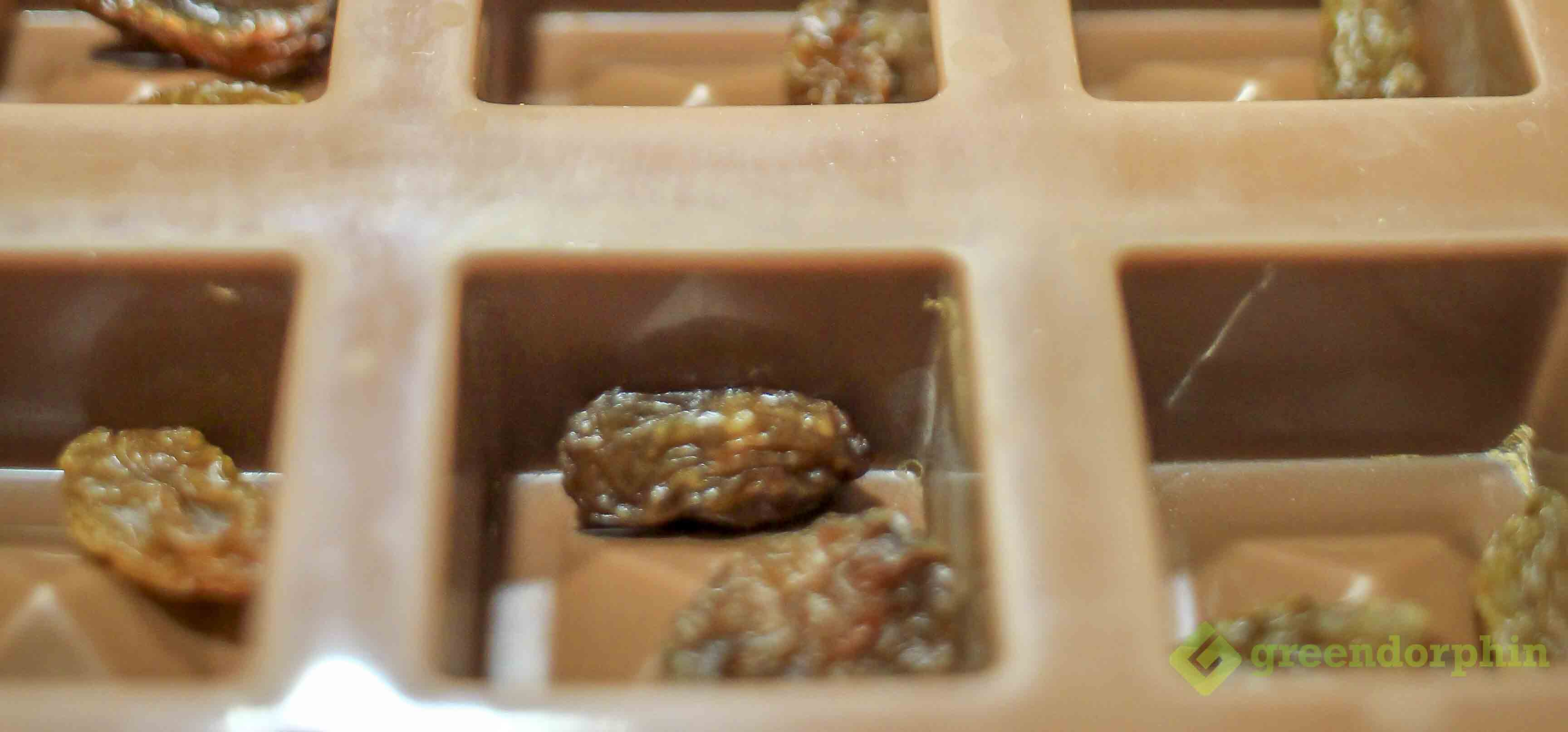 Mould with raisens for Edibles