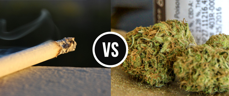 Smoking Weed VS Tobacco : Which One is More Damaging to Your Health?