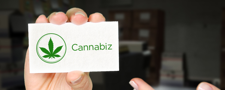 Cannabis business trends