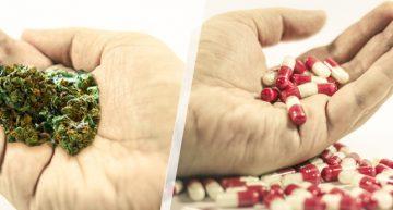 Marijuana As Treatment For Drug Addiction