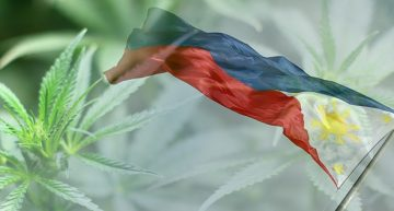 Cannabis in the Philippines