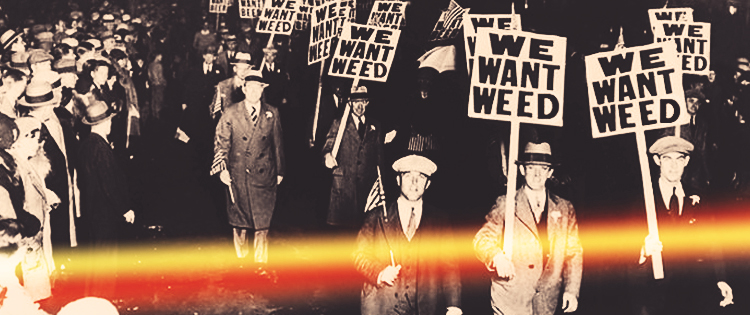 1930s- Marijuana is Taxed and Scheduled as a Dangerous Drug- marijuana legalization movement