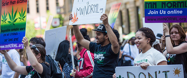 The great organizations fighting for marijuana - marijuana legalization movement