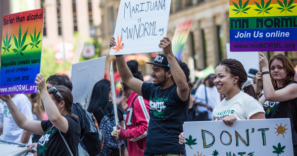 marijuana organizations