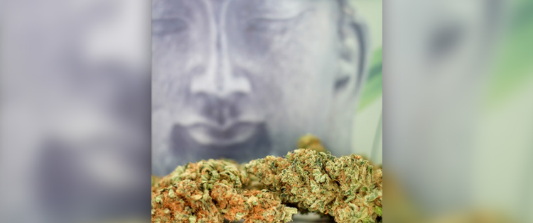 The Art and Science of Ganja Yoga