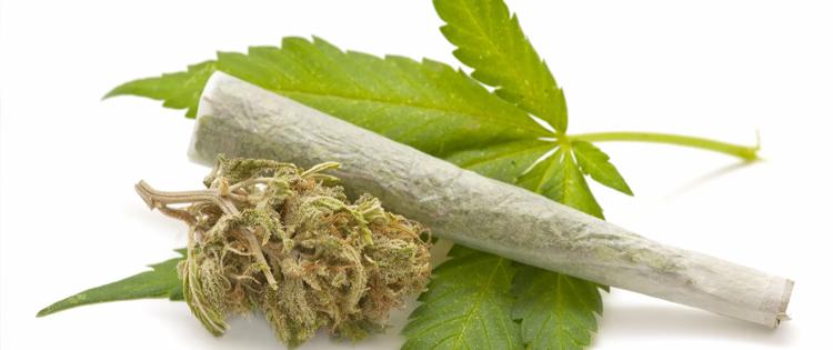 prescribe medical marijuana
