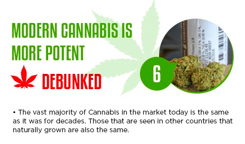 cannabis myths and misconceptions
