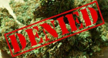 How Does the DEA Decision to Not Reclassify Marijuana Impact you?