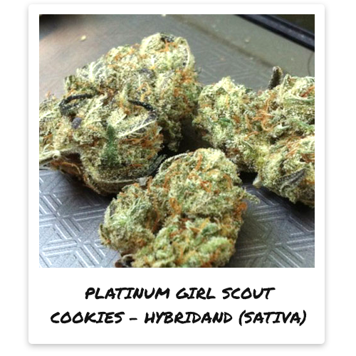 strains pot valet provides