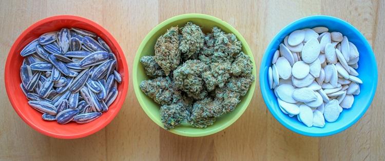 seeds and cooking with marijuana