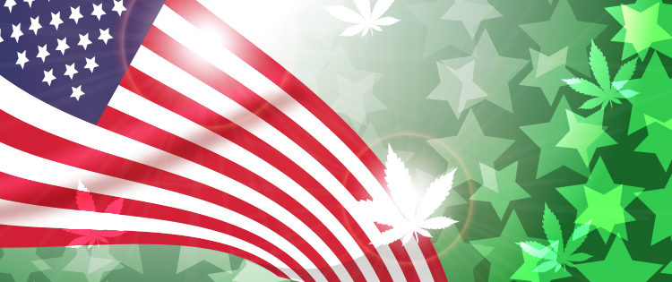 marijuana reform in the US