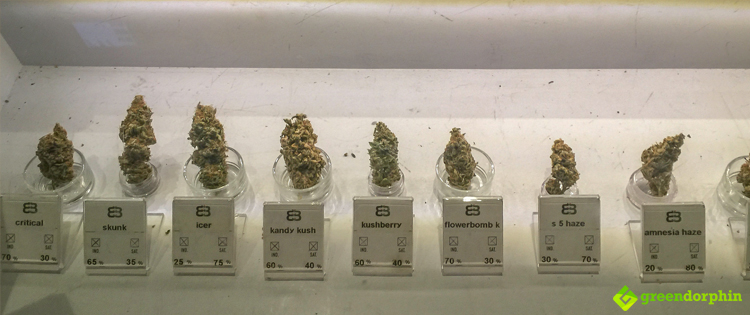 Different cannabis strains
