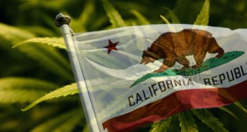 California Studies Regulation Ahead Of Implementing Largest American State Market