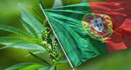Portuguese Doctors Association Supports Legal Cannabis Medicine