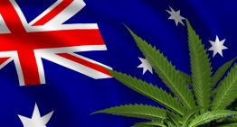 Australian Government Accused of Breaking the Law to Hold Back Medical Cannabis from Terminally Ill Patients