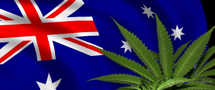 Australia's cannabis law