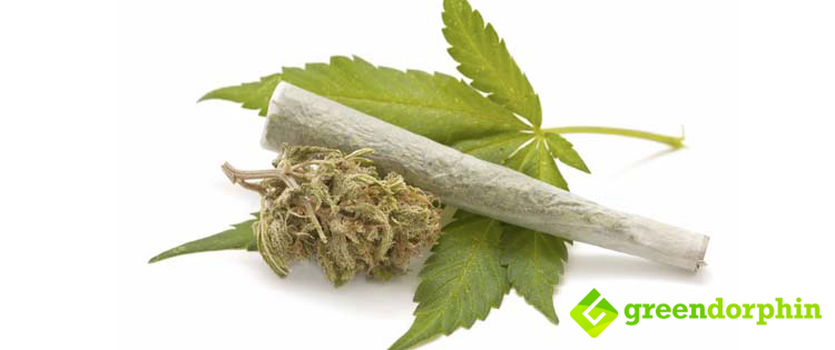 Decriminalization of Cannabis for personal use (up to 15 grams) in Israel