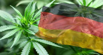 Germany Receives 50kg of Dry Medical Cannabis Flowers in First Shipment from Canada