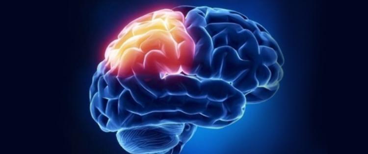 Cannabis can treat Traumatic Brain Injury