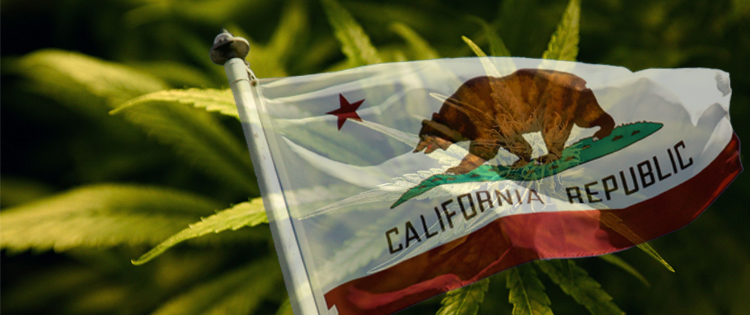 SB 930 - California Special Cannabis Bank