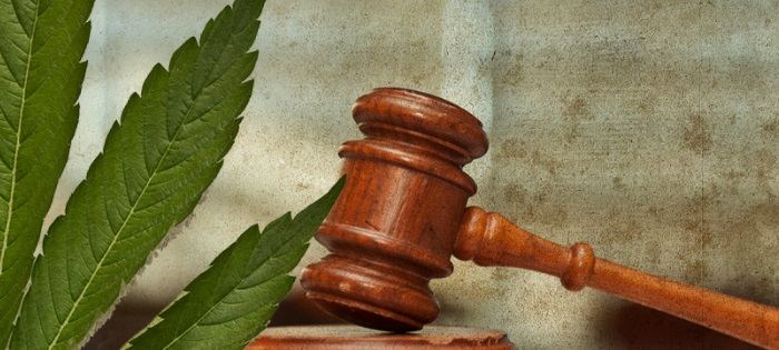 Cannabis laws and regulations
