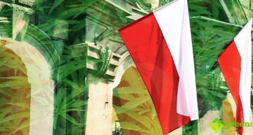 Poland is Next in Europe to Legalize Medical Cannabis