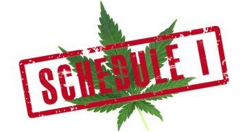 Oregon to Defelonize Not Decriminalize Drug Possession