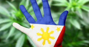 Philippine House of Representatives Approves Medical Cannabis Bill