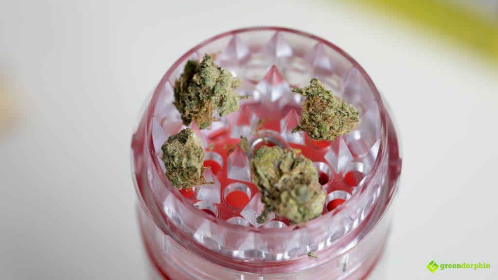 Herbs in the Grindarolla grinder