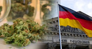 Side Effects of the German Medical Cannabis Program – Short Supply and High Cost