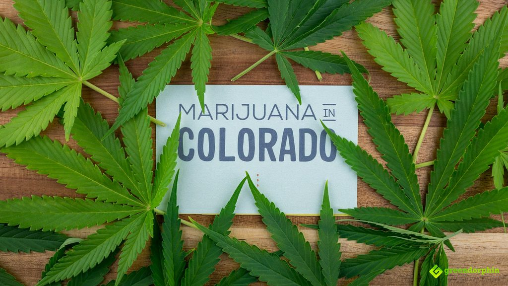 Marijuana in Colorado