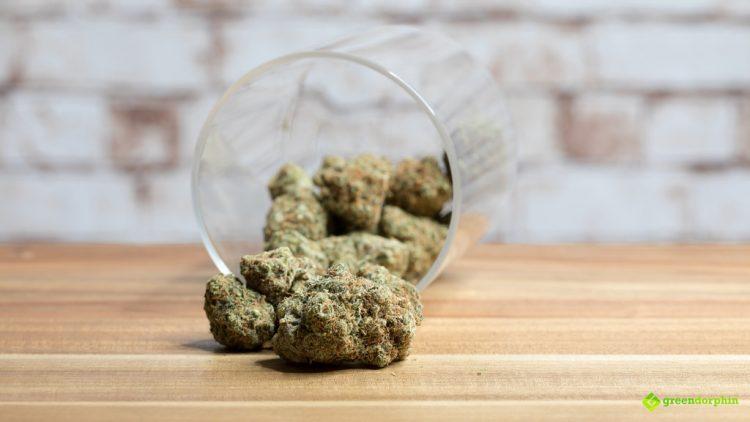using cannabis for creativity