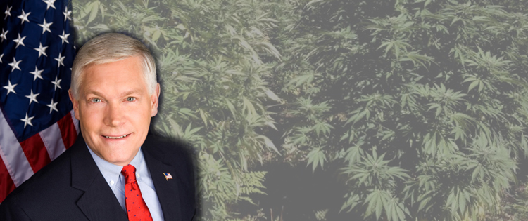 Pete Sessions: The Reason Congress Can't Vote on the Legalization of Marijuana