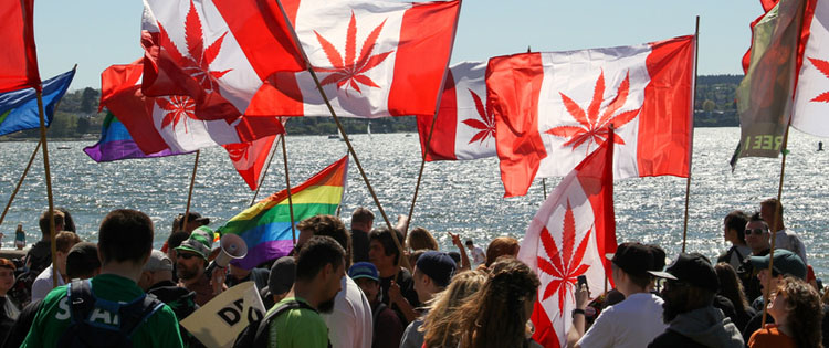 Canada legalising adult use cannabis