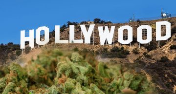 Celebrities are Cashing in on the Cannabis Industry