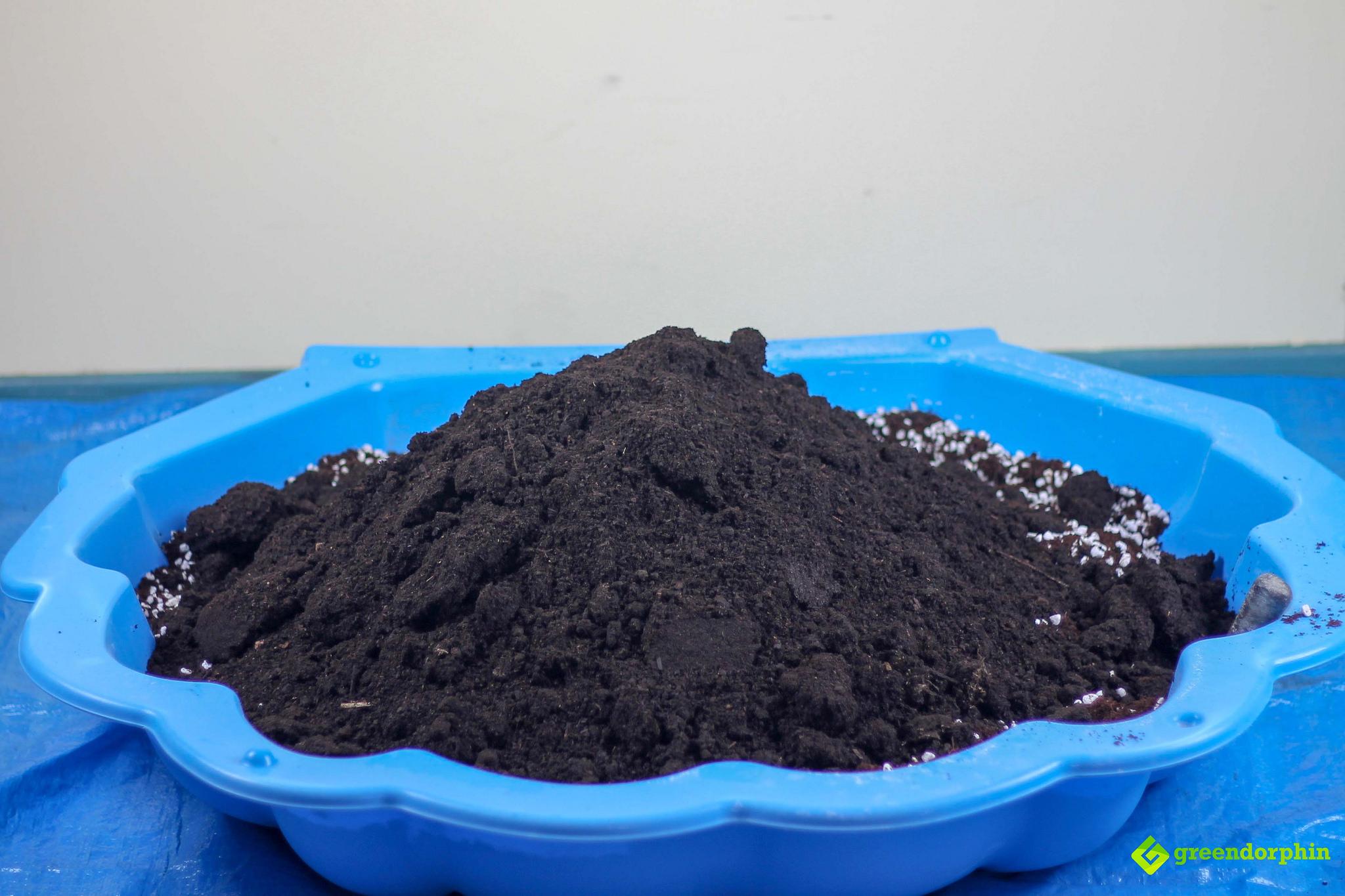 No-Till Soil vermicompost