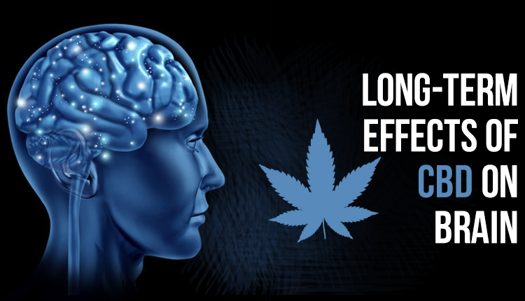 Understanding CBD Interactions and Why CBD and Your Brain Can Be Best Friends