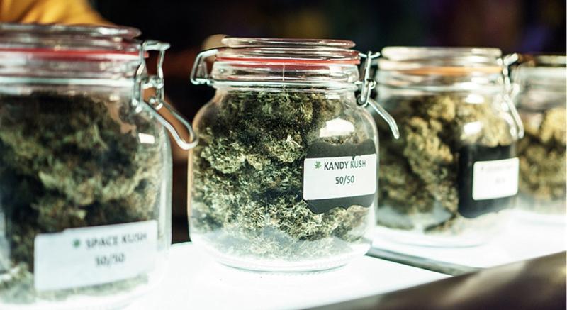 Marijuana Strains for Depression
