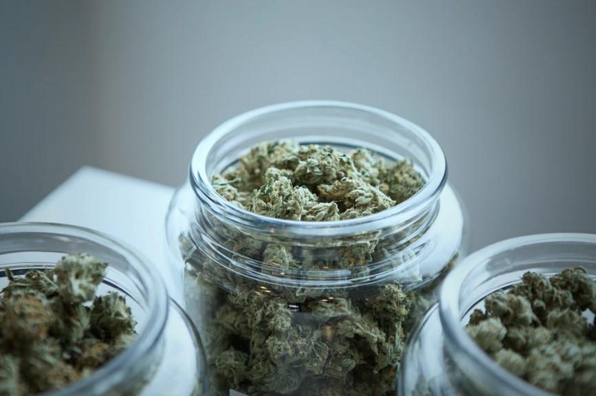 Who Needs Medical Cannabis?